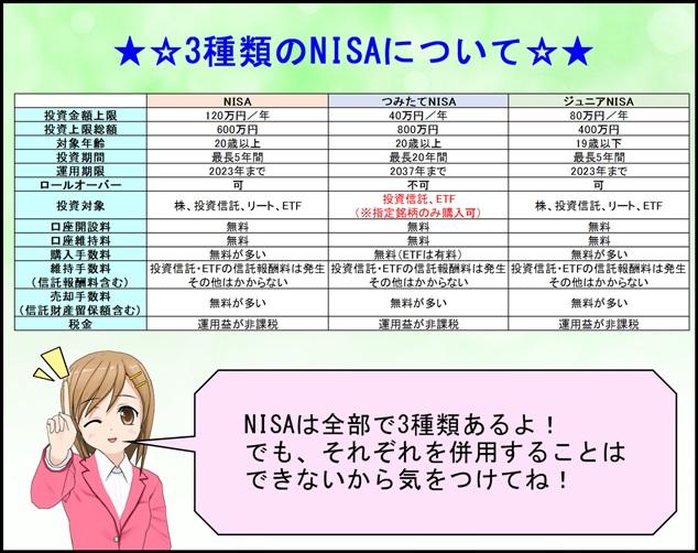NISA_seidogaiyou