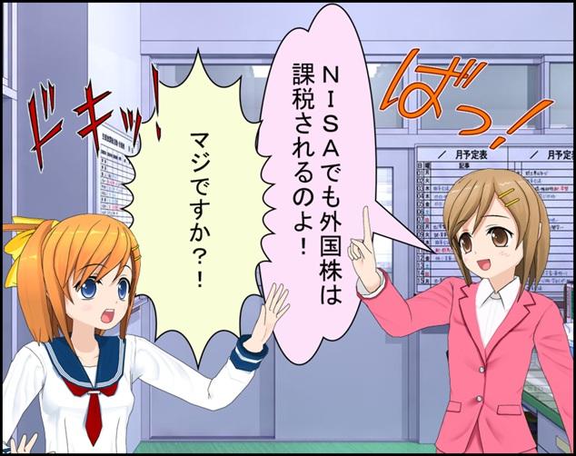 NISA_gaikokukabu1
